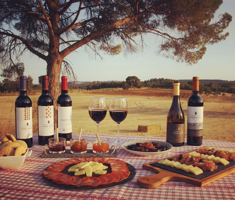 Visita a uma adega de família em Tomar. Visit to a local winery in Tomar